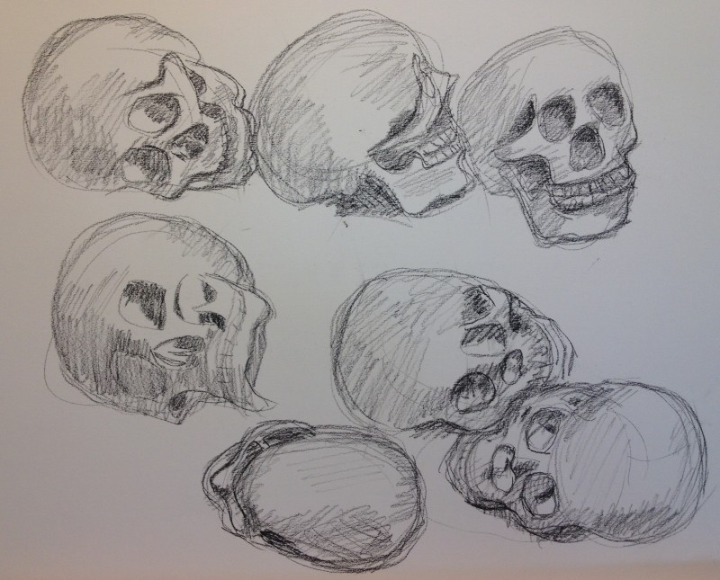 Skull drawings.  Charcoal.  (Doesn't that one in the left middle look like Donald Duck?)