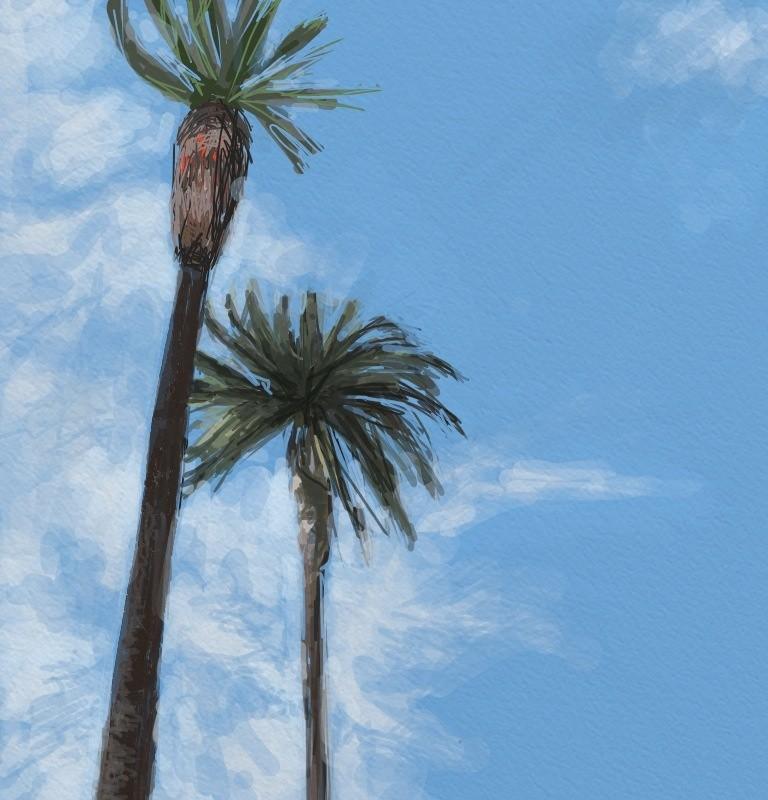 Palms of LA.  iPad.