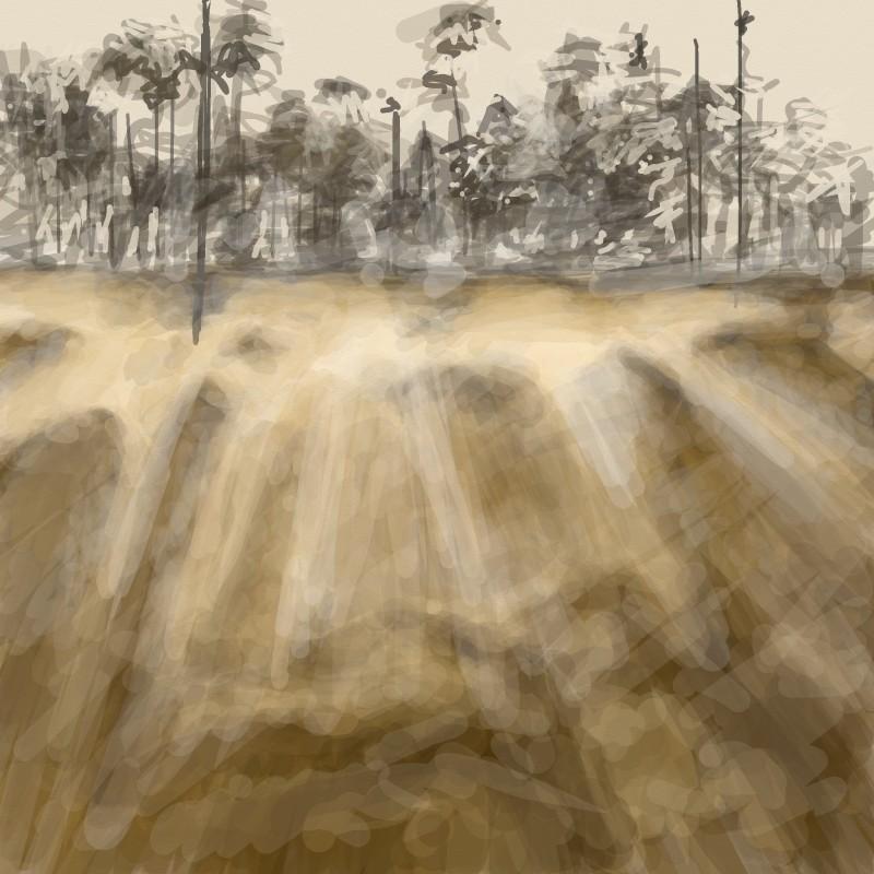 Misty Island Morning, with Pines.  iPad.